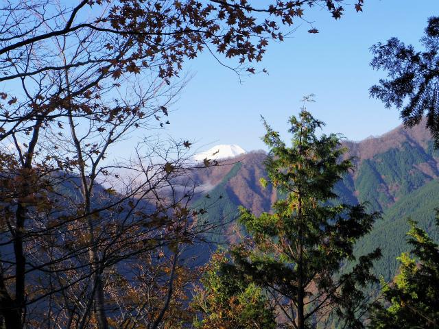 蛭ヶ岳(日陰沢橋~姫次)登山口コースガイド 稜線腰越しの富士山【登山口ナビ】