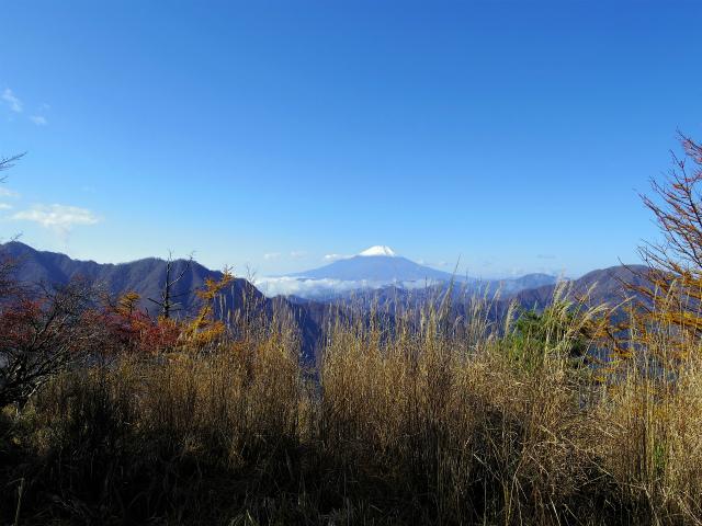 蛭ヶ岳(日陰沢橋~姫次)登山口コースガイド 袖平山山頂からの富士山【登山口ナビ】
