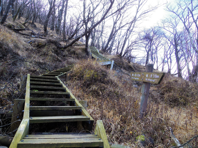 蛭ヶ岳(日陰沢橋~姫次)コースガイド 階段【登山口ナビ】