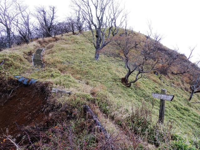 蛭ヶ岳(源蔵尾根~臼ヶ岳)登山口コースガイド 山頂手前の階段【登山口ナビ】