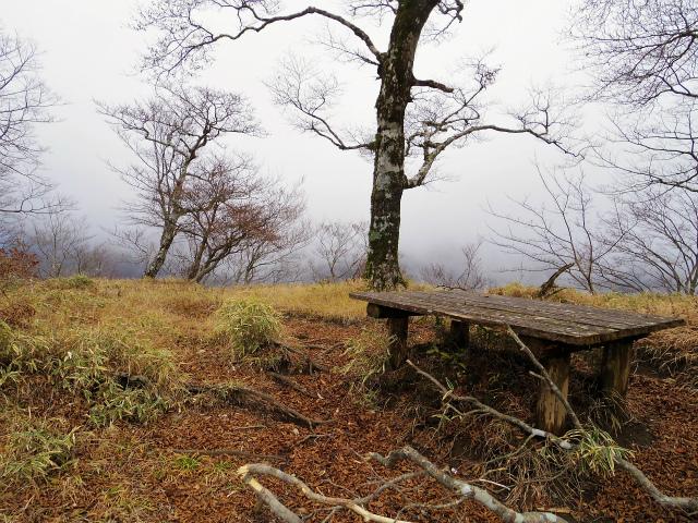 蛭ヶ岳(源蔵尾根~臼ヶ岳)登山口コースガイド 臼ヶ岳分岐【登山口ナビ】
