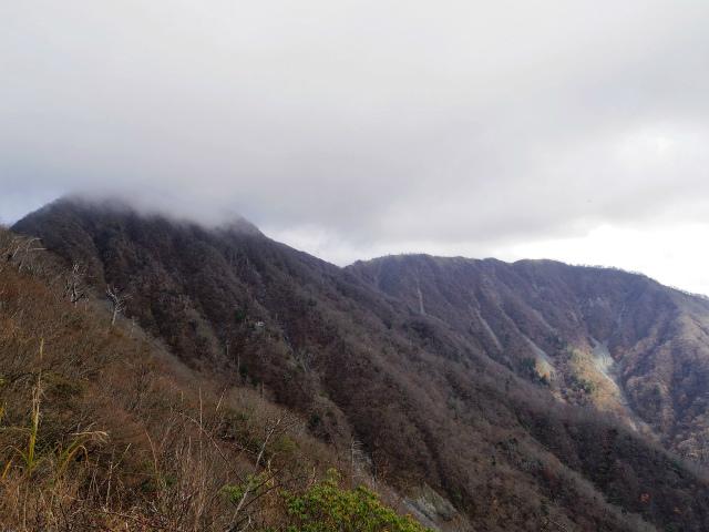 蛭ヶ岳(源蔵尾根~臼ヶ岳)登山口コースガイド 臼ヶ岳からの丹沢主脈の展望【登山口ナビ】