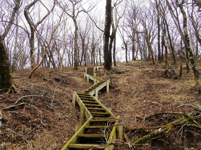 蛭ヶ岳(源蔵尾根~臼ヶ岳)登山口コースガイド 臼ヶ岳山頂直下の階段【登山口ナビ】