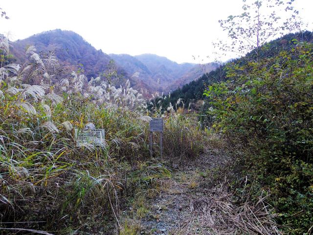 蛭ヶ岳(源蔵尾根~臼ヶ岳)登山口コースガイド 広河原取り付き【登山口ナビ】