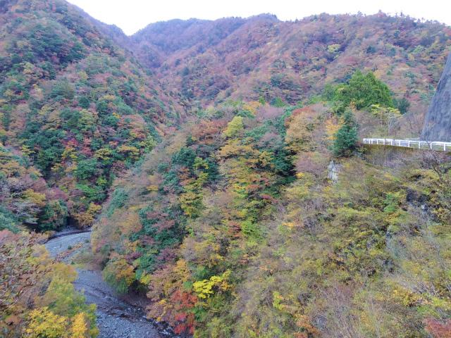 蛭ヶ岳(源蔵尾根~臼ヶ岳)登山口コースガイド 神の川渓谷【登山口ナビ】