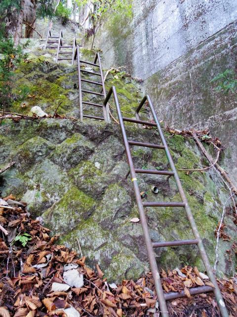 檜洞丸(板小屋沢~石棚山稜) 登山口コースガイド 板小屋沢の堰堤の鉄梯子【登山口ナビ】