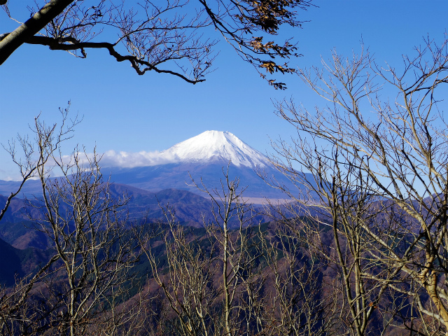 檜洞丸(板小屋沢~石棚山稜) 登山口コースガイド 板小屋沢ノ頭からの富士山【登山口ナビ】