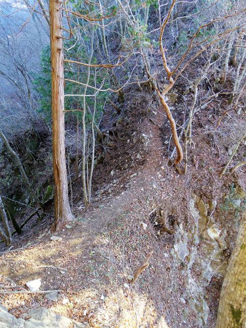 檜洞丸(板小屋沢~石棚山稜) 登山口コースガイド 板小屋沢ノ頭の鞍部【登山口ナビ】