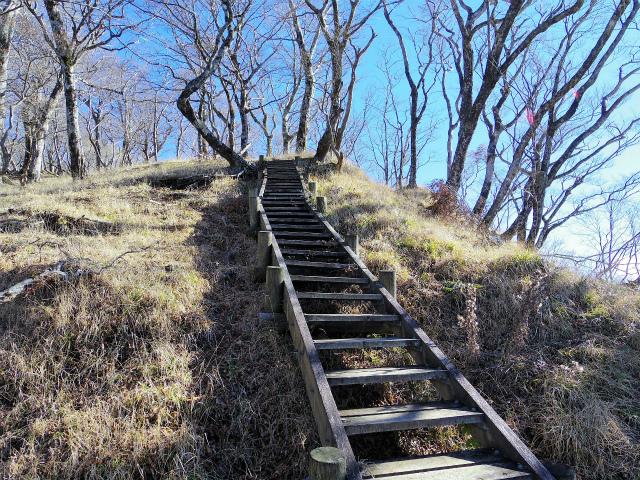 檜洞丸(板小屋沢~石棚山稜) 登山口コースガイド 石棚山稜への階段【登山口ナビ】