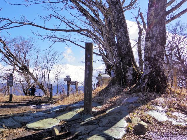 檜洞丸(板小屋沢~石棚山稜) 登山口コースガイド 山頂【登山口ナビ】