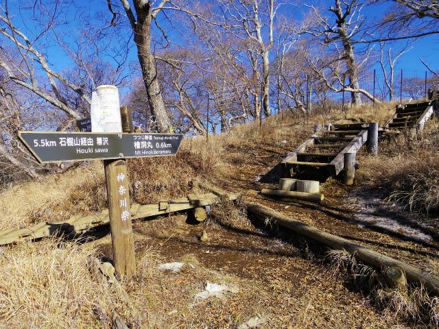 檜洞丸(ツツジ新道)登山口コースガイド 石棚山稜分岐【登山口ナビ】