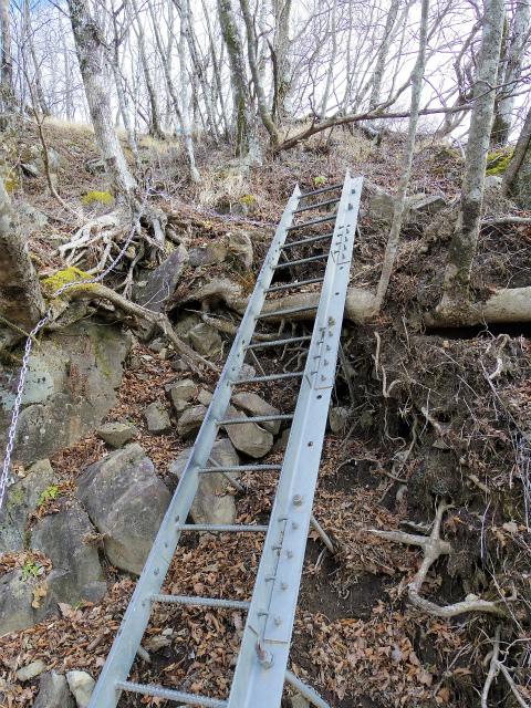 檜洞丸(ツツジ新道)登山口コースガイド 鉄梯子【登山口ナビ】