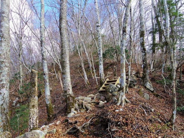 檜洞丸(ツツジ新道)登山口コースガイド【登山口ナビ】