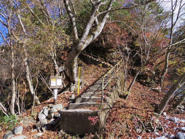 檜洞丸(ツツジ新道)登山口コースガイド 階段【登山口ナビ】