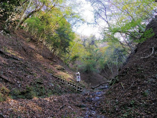 檜洞丸(ツツジ新道)登山口コースガイド 尾根の取り付き【登山口ナビ】