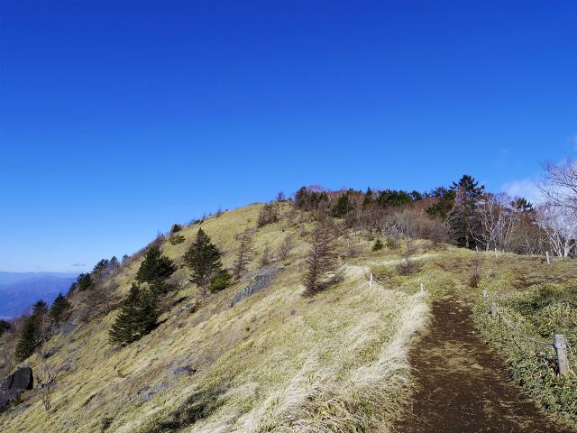 大菩薩嶺(大菩薩峠~唐松尾根周回)登山口コースガイド【登山口ナビ】