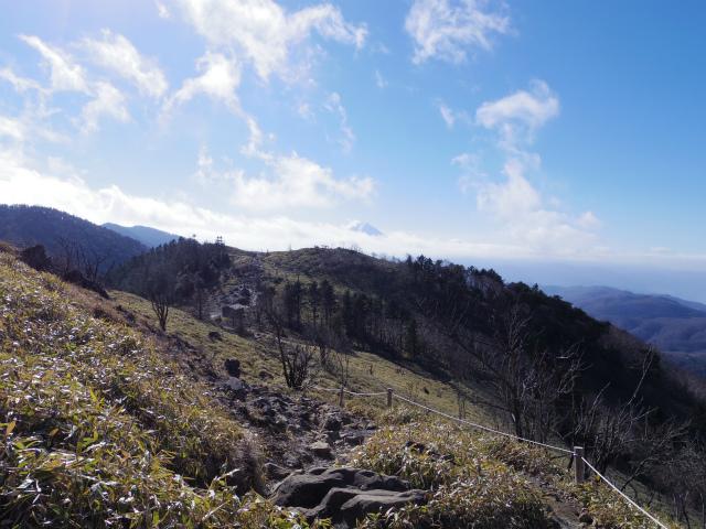 大菩薩嶺(旧道~唐松尾根周回コース) 登山口コースガイド 稜線からの富士山【登山口ナビ】