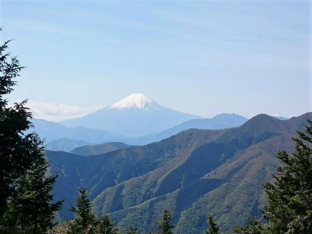 秀麗富嶽十二景 5番山頂 登山口コースガイド 奈良倉山山頂【登山口ナビ】