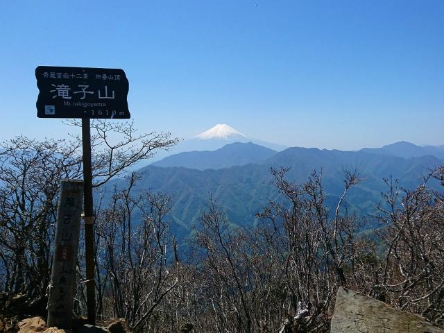 秀麗富嶽十二景 4番山頂 登山口コースガイド 滝子山山頂【登山口ナビ】