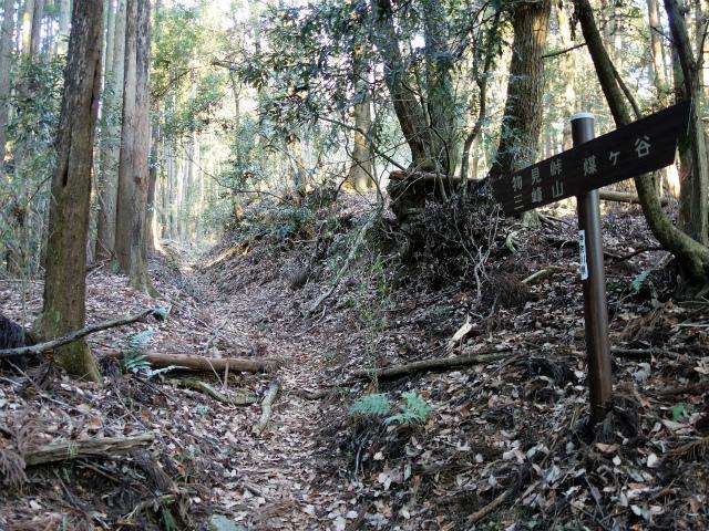 三峰山(物見峠~不動尻周回)登山口コースガイド【登山口ナビ】