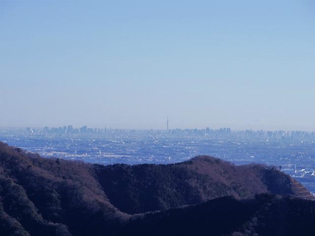三峰山(物見峠~不動尻周回)登山口コースガイド 物見峠からスカイツリーの眺望【登山口ナビ】