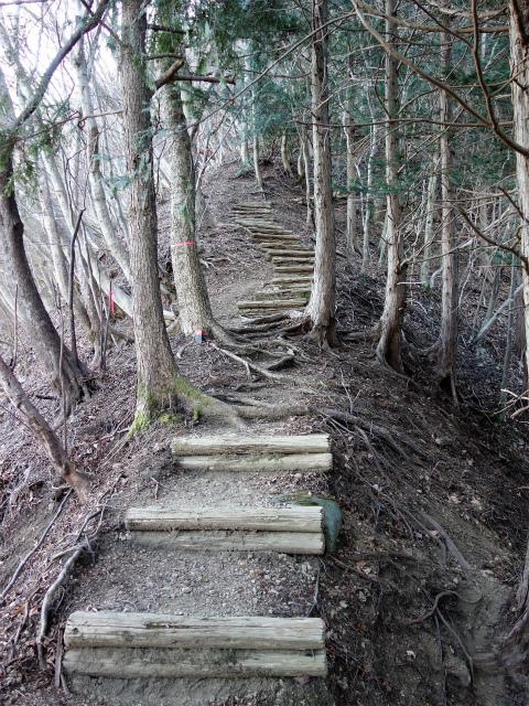 三峰山(物見峠~不動尻周回)登山口コースガイド 階段の急登【登山口ナビ】