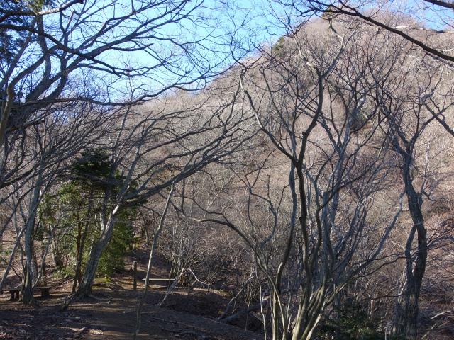 三峰山(物見峠~不動尻周回)登山口コースガイド 西峰鞍部【登山口ナビ】