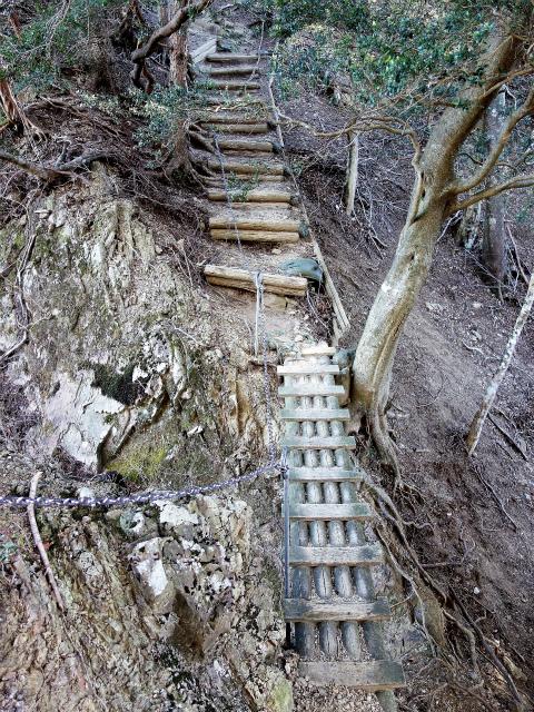 三峰山(物見峠~不動尻周回)登山口コースガイド 山頂直前の階段【登山口ナビ】