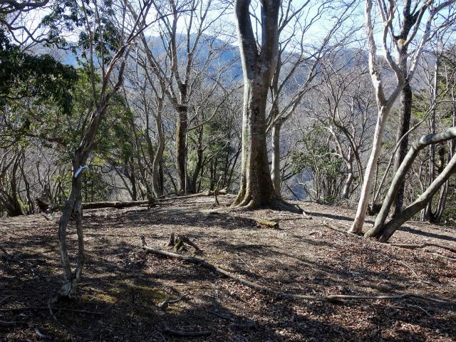 三峰山(物見峠~不動尻周回)登山口コースガイド 唐沢峠方面の最初のピーク【登山口ナビ】