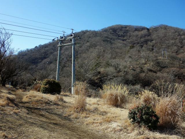 大山(不動尻~唐沢峠)登山口コースガイド 送電線【登山口ナビ】