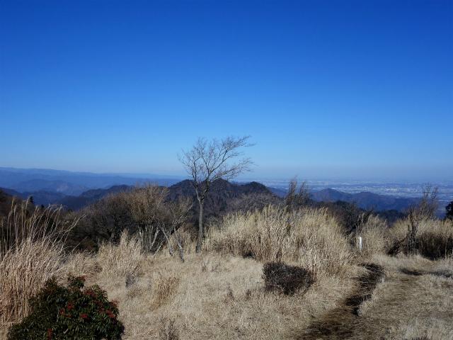 大山(不動尻~唐沢峠)登山口コースガイド 送電線付近からの三峰山や市街地の眺望【登山口ナビ】