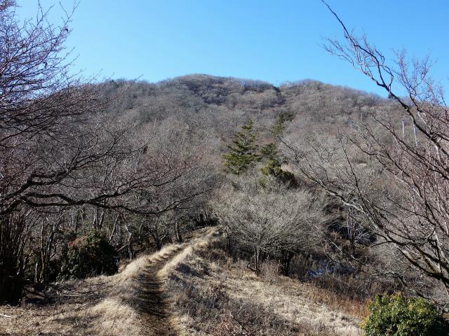 大山(不動尻~唐沢峠)登山口コースガイド【登山口ナビ】