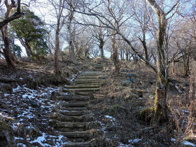大山(不動尻~唐沢峠)登山口コースガイド 階段【登山口ナビ】