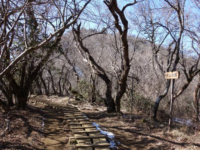 大山(不動尻~唐沢峠)登山口コースガイド 大山の肩【登山口ナビ】