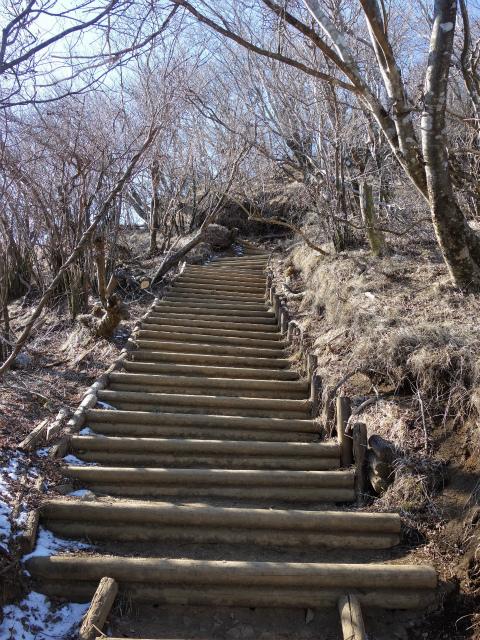 大山(不動尻~唐沢峠)登山口コースガイド 山頂直下の階段【登山口ナビ】