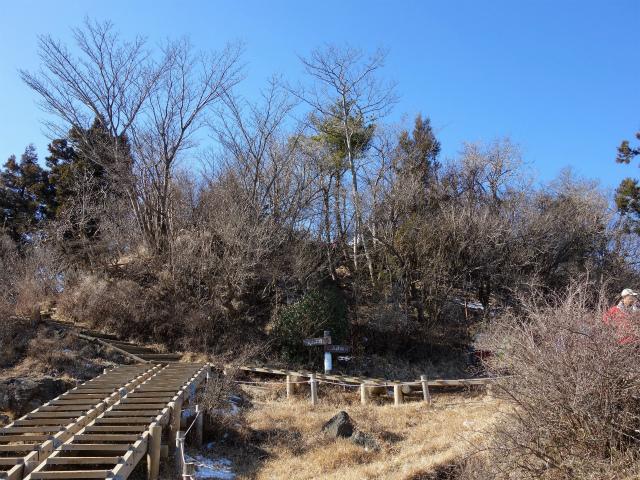 大山(不動尻~唐沢峠)登山口コースガイド 山頂直下の御中道分岐【登山口ナビ】