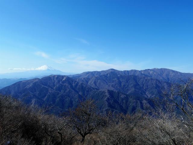 大山(不動尻~唐沢峠)登山口コースガイド 富士見台からの丹沢表尾根の眺望【登山口ナビ】