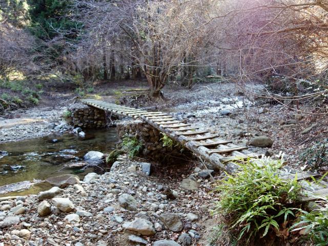 大山(不動尻~唐沢峠)登山口コースガイド 木橋【登山口ナビ】