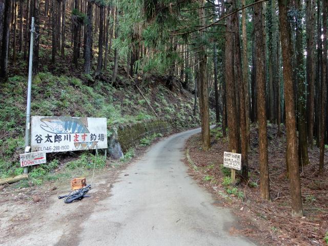 大山(不動尻~唐沢峠)登山口コースガイド 谷太郎川マス釣場【登山口ナビ】