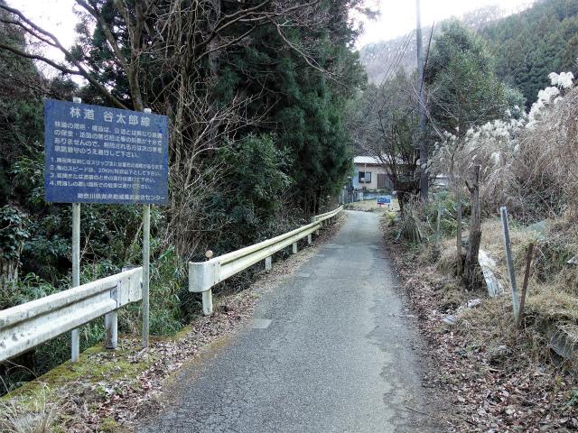 大山(不動尻~唐沢峠)登山口コースガイド 谷太郎林道起点【登山口ナビ】