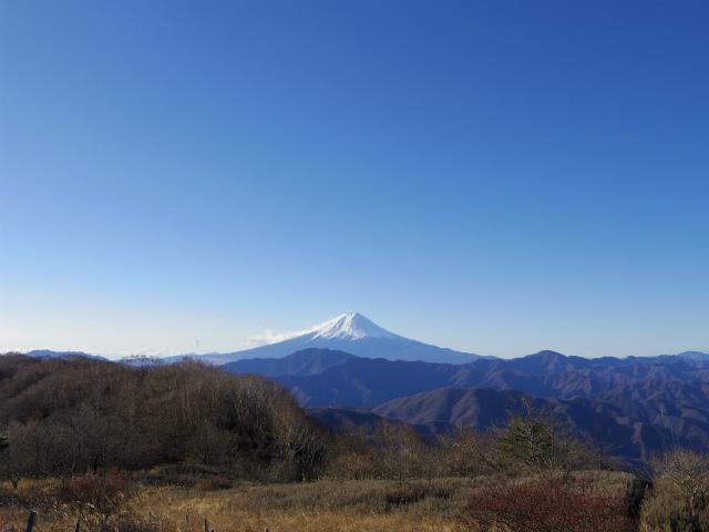 秀麗富嶽十二景 3番山頂 登山口コースガイド 大蔵高丸山頂【登山口ナビ】