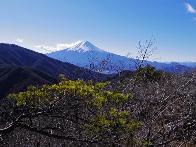 三ツ峠山(本社ヶ丸~清八山) 清八山山頂からの富士山【登山口コースガイド】