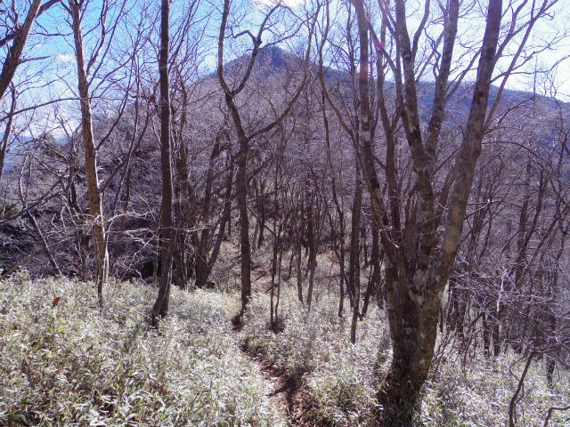 三ツ峠山(本社ヶ丸~清八山) 茶臼山【登山口コースガイド】