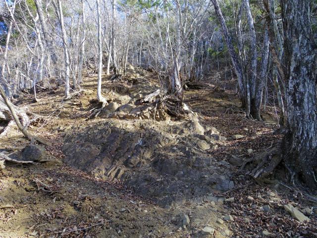 三ツ峠山(本社ヶ丸~清八山) 鞍部の露岩【登山口コースガイド】