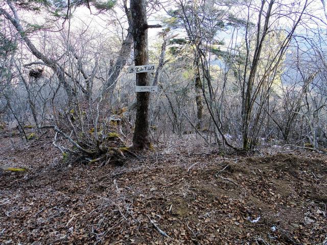 三ツ峠山(北口登山道)登山口コースガイド 水雲山下山口分岐【登山口コースガイド】