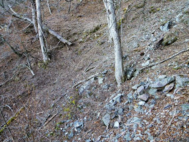 三ツ峠山(北口登山道)登山口コースガイド ガレ場の横断【登山口コースガイド】