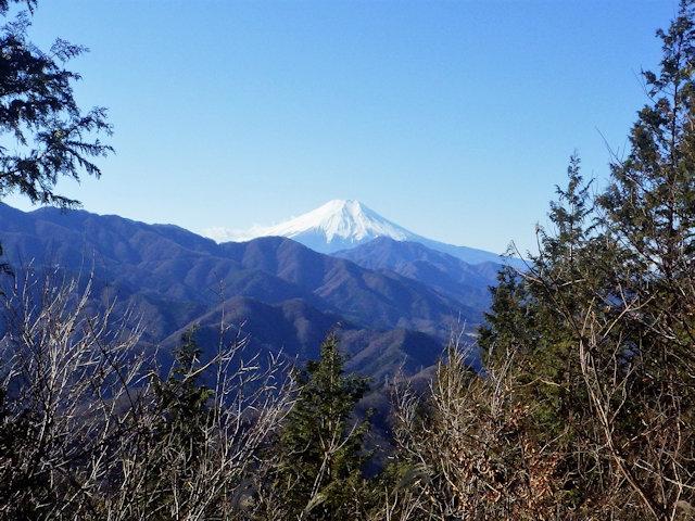 秀麗富嶽十二景 9番山頂 登山口コースガイド 高畑山山頂【登山口ナビ】