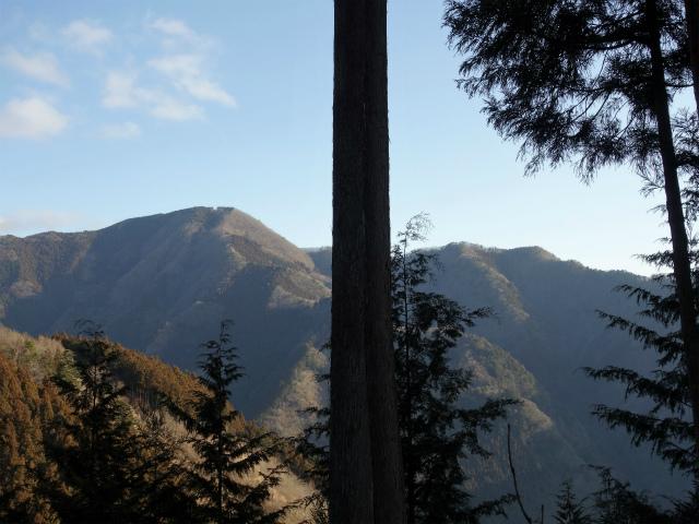 鷹ノ巣山(六ツ石山~石尾根縦走路)登山口コースガイド 川苔山【登山口ナビ】