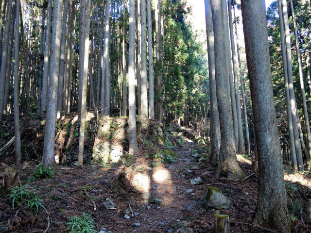 鷹ノ巣山(六ツ石山~石尾根縦走路)登山口コースガイド 旧集落跡【登山口ナビ】