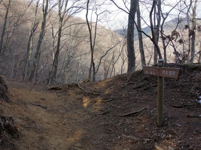鷹ノ巣山(六ツ石山~石尾根縦走路)登山口コースガイド 作業道分岐【登山口ナビ】